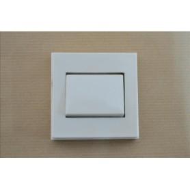 Interruptor Superficie 5001 10 A.  Rfª. 244.4